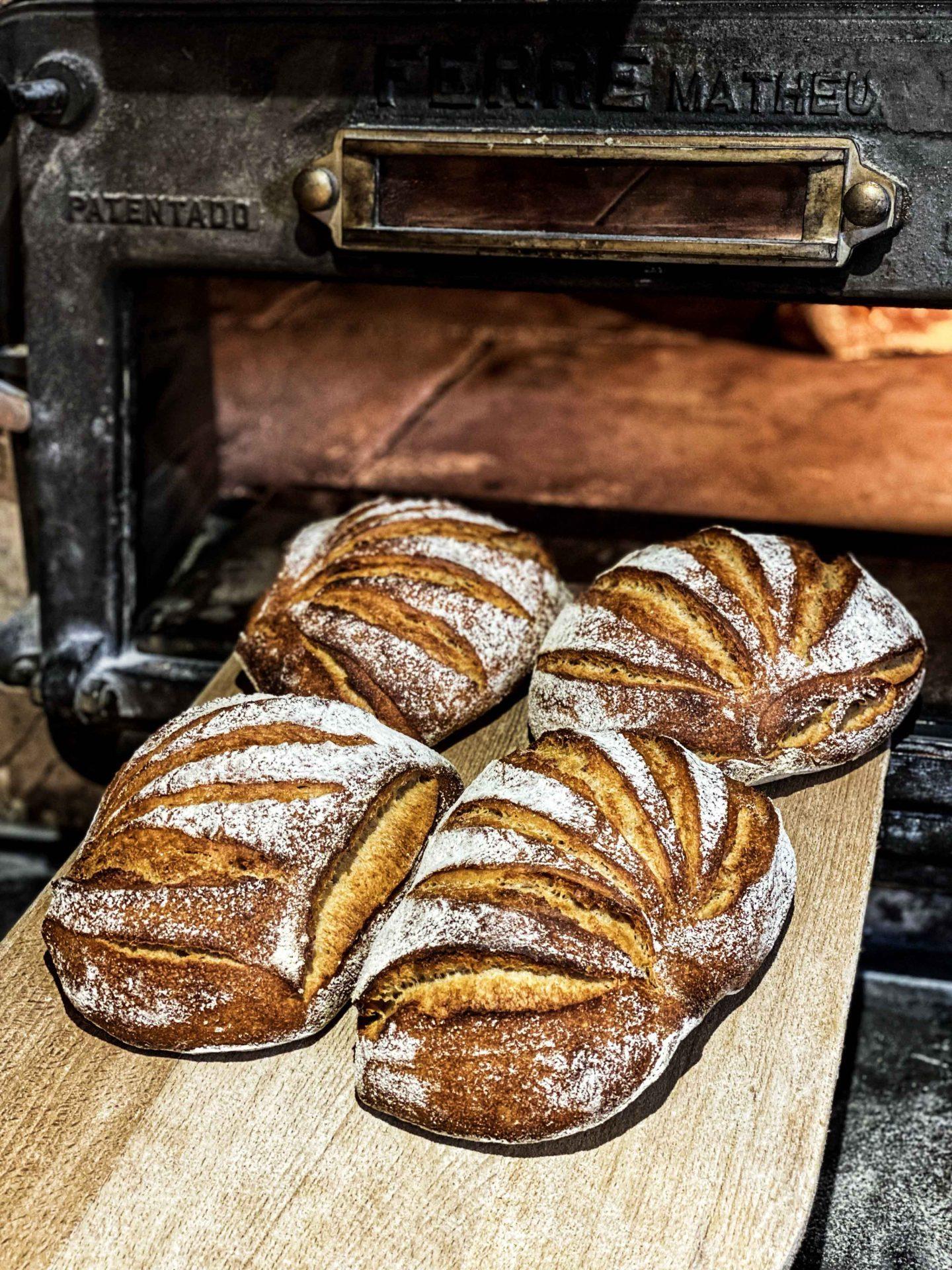 לחם חיטה עתיקה
